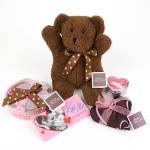 gift teddy bear photography